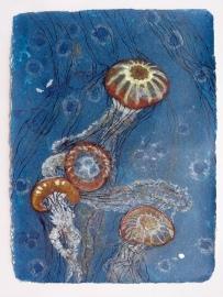 Jellies 3 75 x 57 cm, in the studio