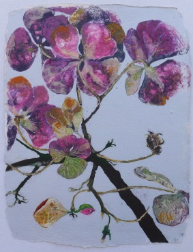 Hortensia 81 x 62 cm, in China now
