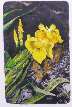 Iris Wedding 91 x 56 cm, in China now