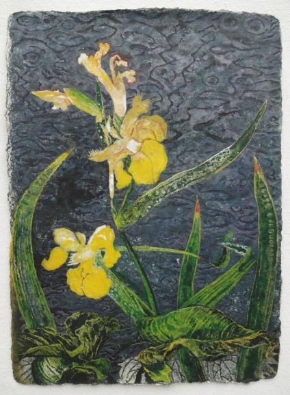 Iris at Dusk 78 X 57 cm, in studio