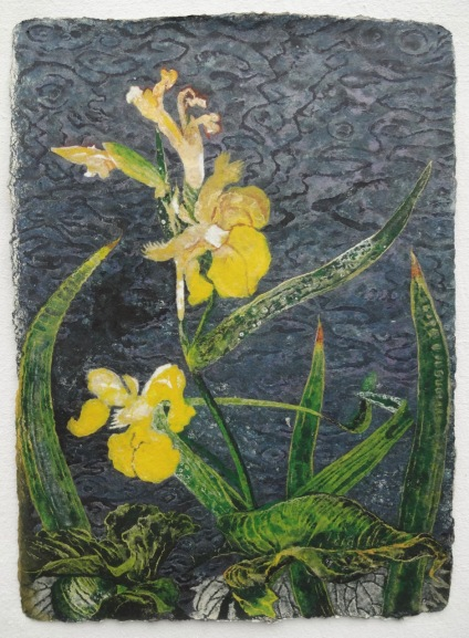 Iris at Dusk 78 X 57 cm, in studio