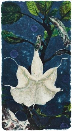Datura Dream 104 x 55 cm, in studio
